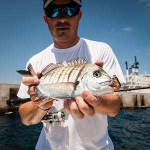 Fioretto FSM-732RFS Molix - caña rockfishing - sargo