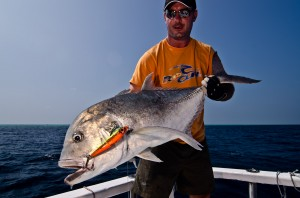 Giant Trevalli - GT - sacado a spinning - Maldive