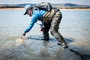 Muchas respuestas sobre la pesca con señuelos