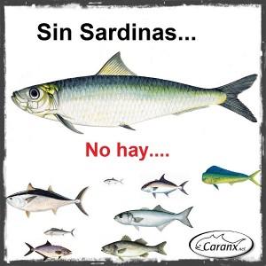 Sin Sardinas no hay futuro